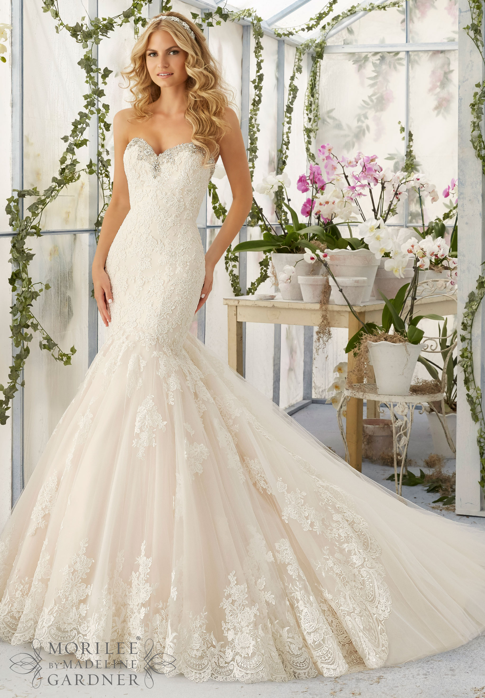 The perfect guide to buying brides dresses careyfashion junglespirit Gallery